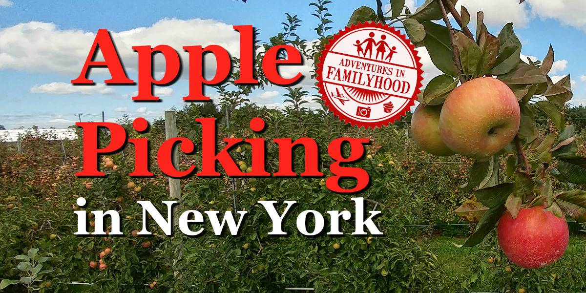 apple-picking-in-ny-title